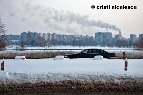 Foto: Cristi Niculescu