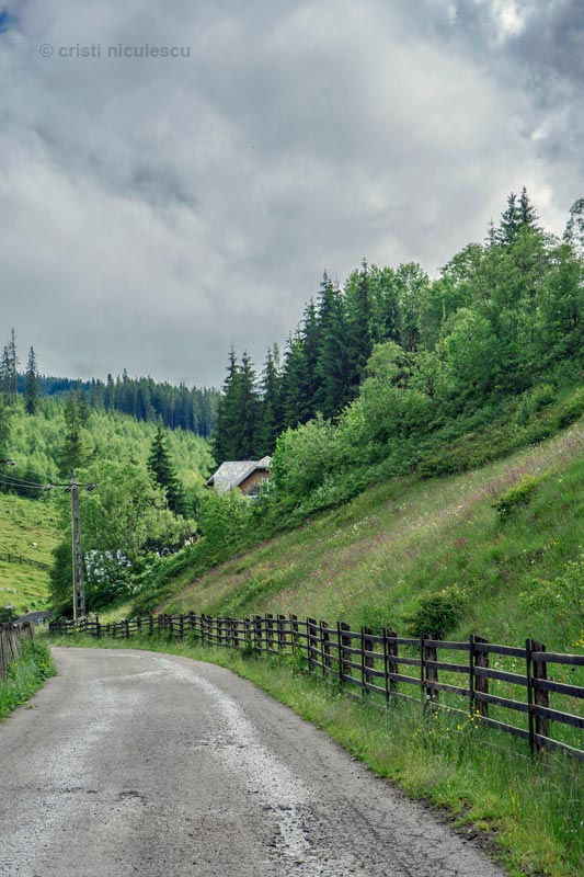 suhard-road