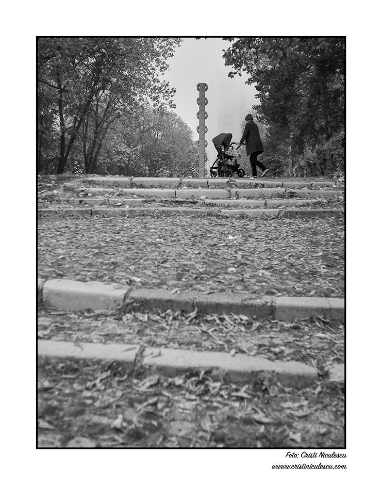 Coloana din parc